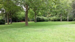 Grünfläche hinterm Vincenz-Kranknhaus